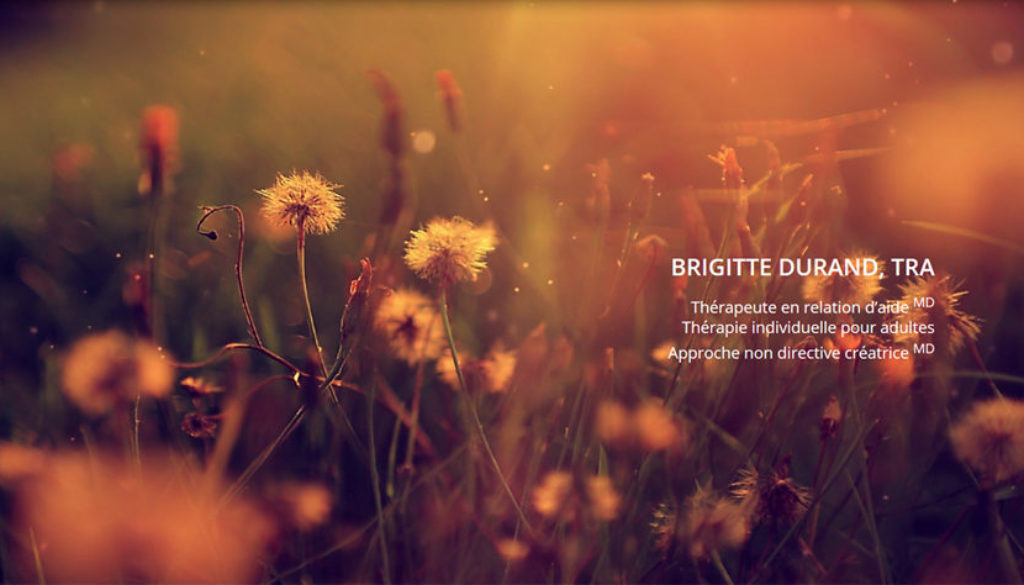 site-web-brigitte-durand-tra